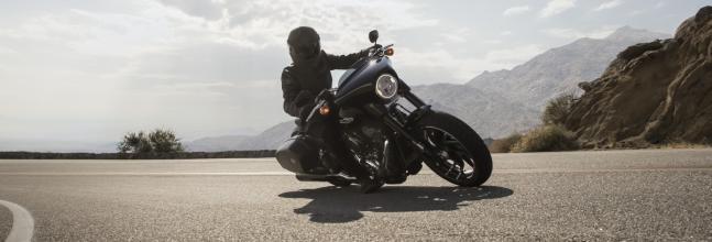 Harley-Davidson Sport Glide: Harley para todo