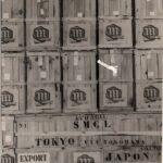 1959 exportacion